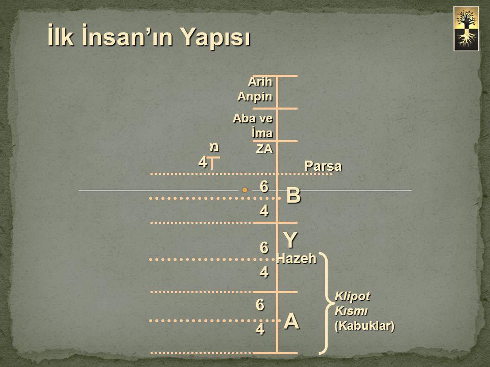İlk İnsan'ın Yapısı Arih Anpin Aba ve İma ZA Parsa מ 4 B Y A 6 4 Hazeh Klipot Kısmı (Kabuklar) 6 4 6 4