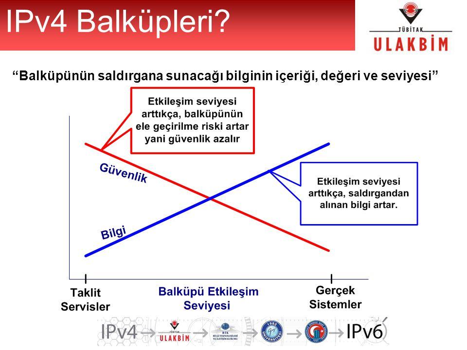 """""""Balküpünün saldırgana sunacağı bilginin içeriği, değeri ve seviyesi"""" IPv4 Balküpleri?"""