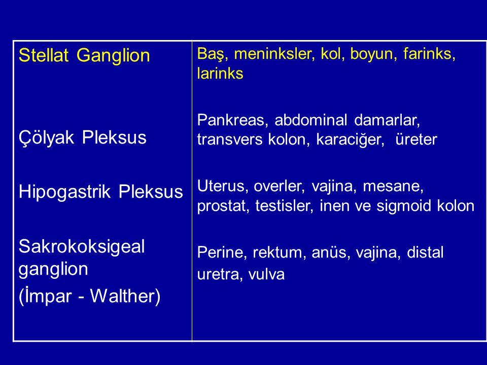 Stellat Ganglion Çölyak Pleksus Hipogastrik Pleksus Sakrokoksigeal ganglion (İmpar - Walther) Baş, meninksler, kol, boyun, farinks, larinks Pankreas,