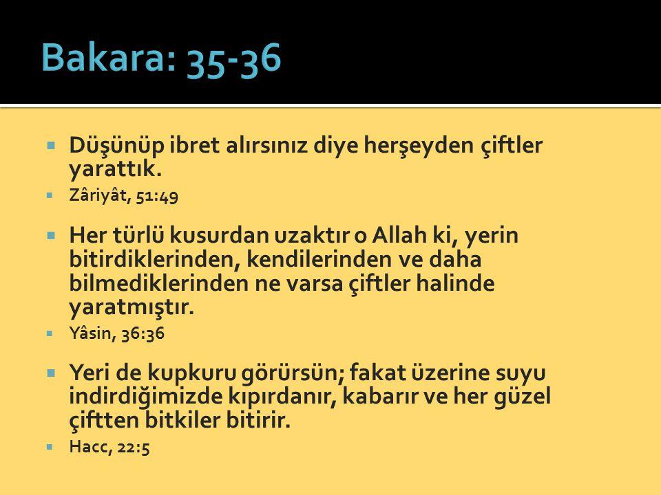  sen aralarında olduğun müddetçe Allah onları cezalandıracak değildir.
