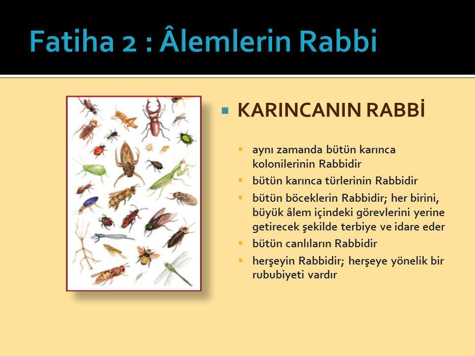  KARINCANIN RABBİ  aynı zamanda bütün karınca kolonilerinin Rabbidir  bütün karınca türlerinin Rabbidir  bütün böceklerin Rabbidir; her birini, büyük âlem içindeki görevlerini yerine getirecek şekilde terbiye ve idare eder  bütün canlıların Rabbidir  herşeyin Rabbidir; herşeye yönelik bir rububiyeti vardır