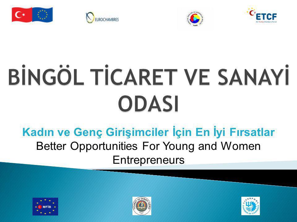 Kadın ve Genç Girişimciler İçin En İyi Fırsatlar Better Opportunities For Young and Women Entrepreneurs