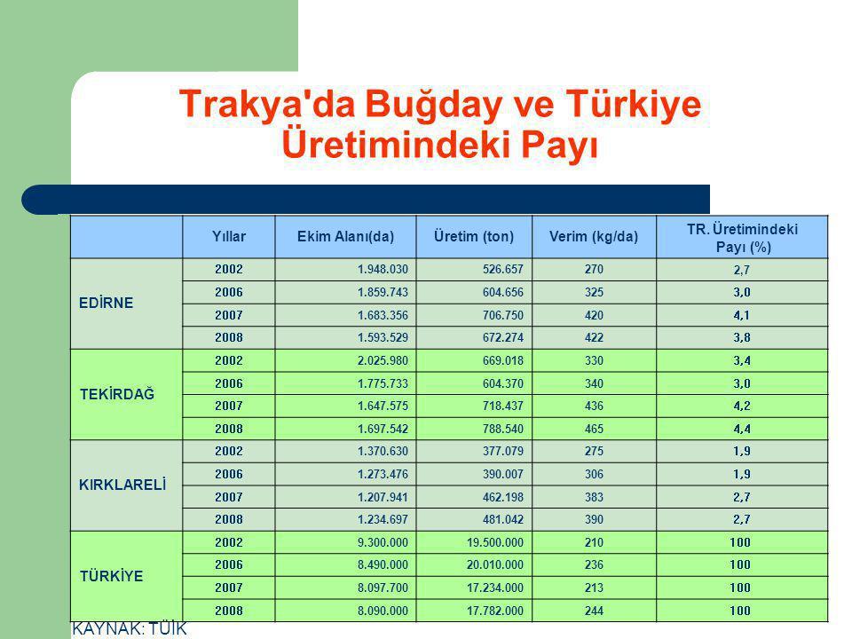 Trakya'da Buğday ve Türkiye Üretimindeki Payı YıllarEkim Alanı(da)Üretim (ton)Verim (kg/da) TR. Üretimindeki Payı (%) EDİRNE 20021.948.030526.6572702,