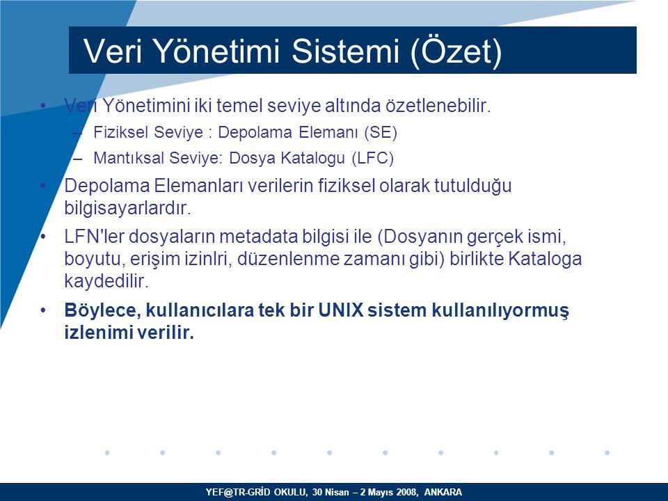 YEF@TR-GRİD OKULU, 30 Nisan – 2 Mayıs 2008, ANKARA Veri Yönetimini iki temel seviye altında özetlenebilir.