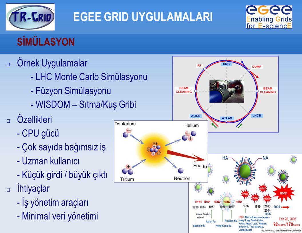 SİMÜLASYON EGEE GRID UYGULAMALARI  Örnek Uygulamalar - LHC Monte Carlo Simülasyonu - Füzyon Simülasyonu - WISDOM – Sıtma/Kuş Gribi  Özellikleri - CPU gücü - Çok sayıda bağımsız iş - Uzman kullanıcı - Küçük girdi / büyük çıktı  İhtiyaçlar - İş yönetim araçları - Minimal veri yönetimi