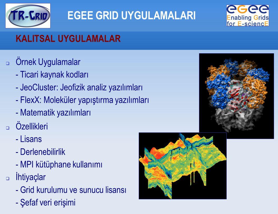 KALITSAL UYGULAMALAR EGEE GRID UYGULAMALARI  Örnek Uygulamalar - Ticari kaynak kodları - JeoCluster: Jeofizik analiz yazılımları - FlexX: Moleküler yapıştırma yazılımları - Matematik yazılımları  Özellikleri - Lisans - Derlenebilirlik - MPI kütüphane kullanımı  İhtiyaçlar - Grid kurulumu ve sunucu lisansı - Şefaf veri erişimi