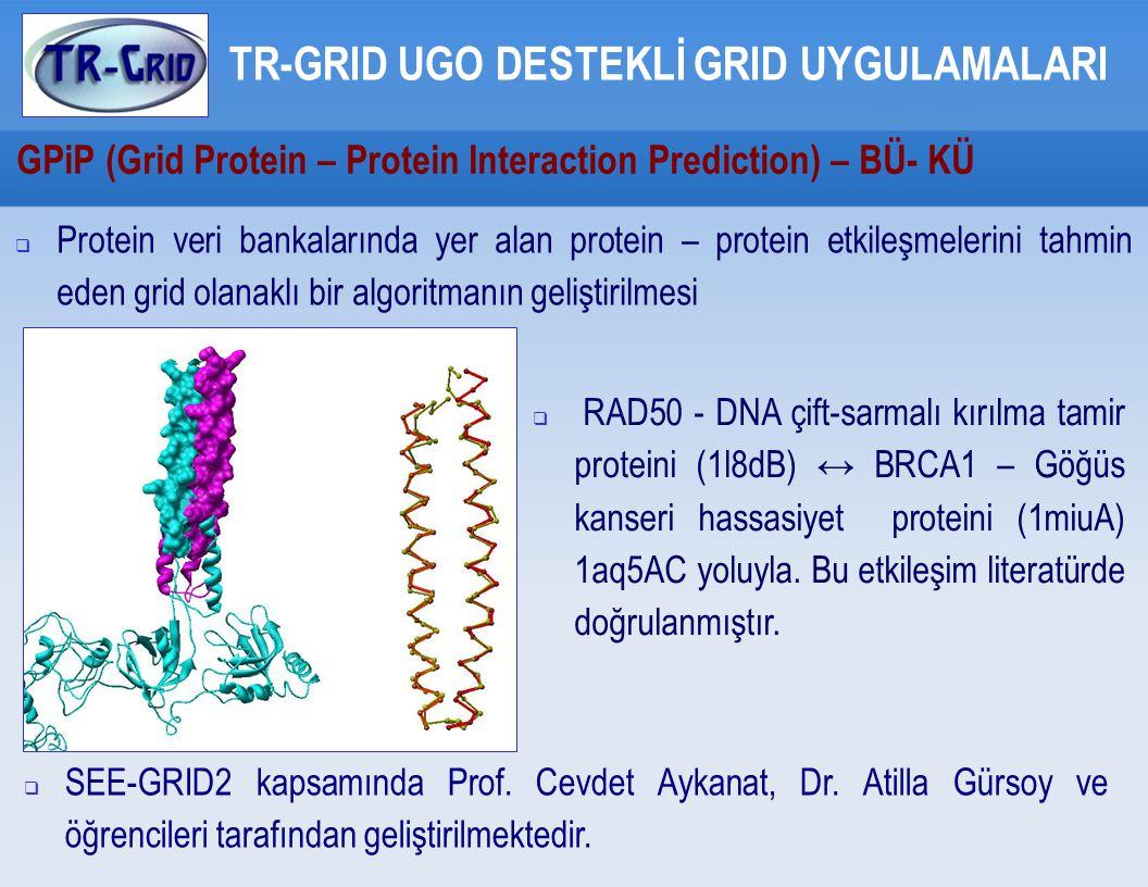 GPiP (Grid Protein – Protein Interaction Prediction) – BÜ- KÜ TR-GRID UGO DESTEKLİ GRID UYGULAMALARI  Protein veri bankalarında yer alan protein – protein etkileşmelerini tahmin eden grid olanaklı bir algoritmanın geliştirilmesi  SEE-GRID2 kapsamında Prof.