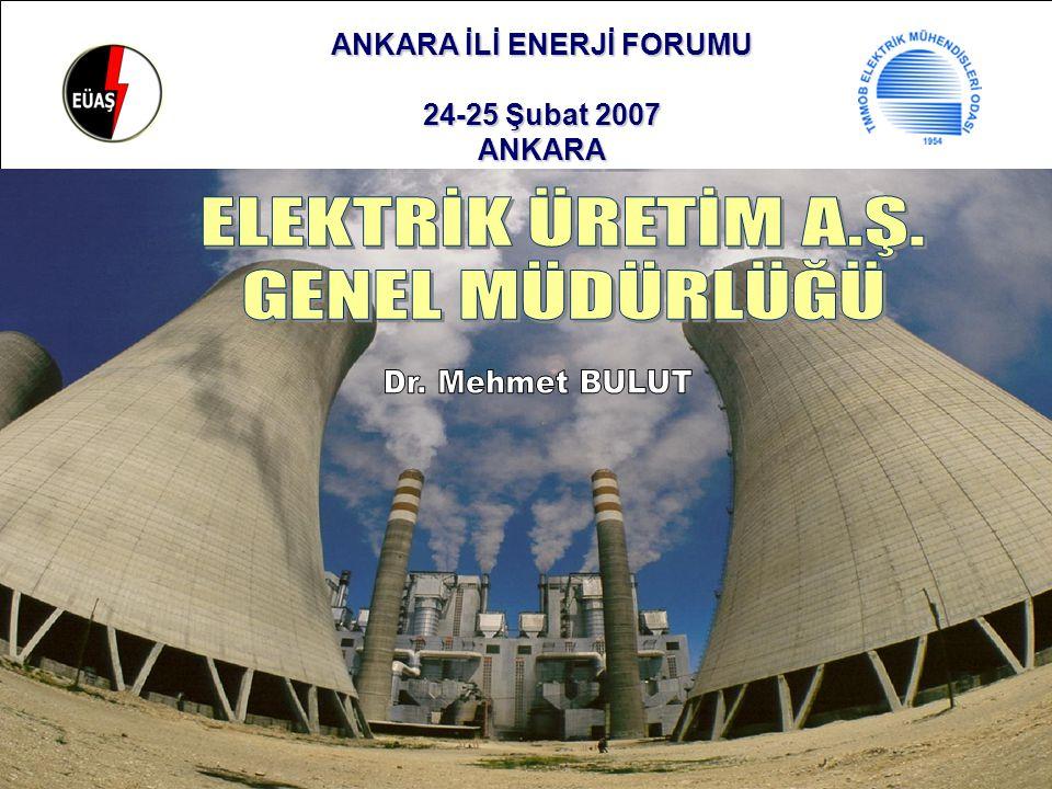 ANKARA İLİ ENERJİ FORUMU 24-25 Şubat 2007 ANKARA