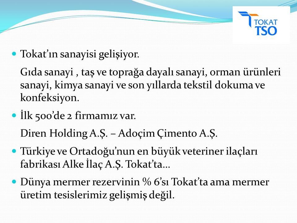 Tokat'ın sanayisi gelişiyor.