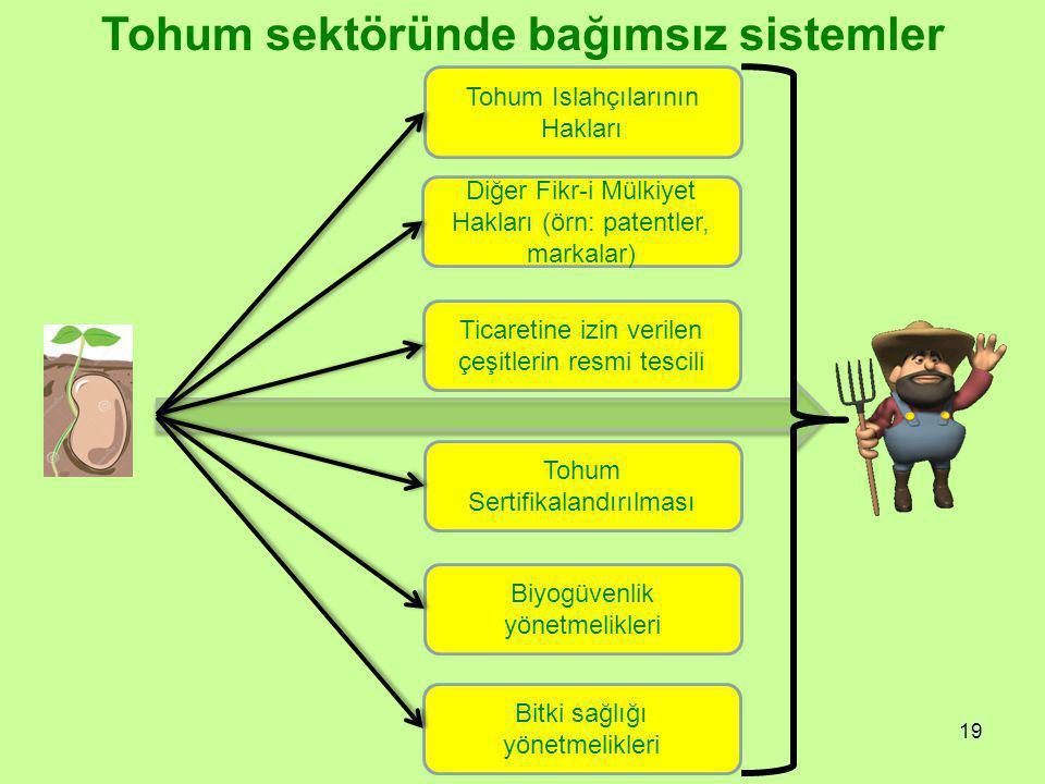 19 Tohum sektöründe bağımsız sistemler Tohum Sertifikalandırılması Ticaretine izin verilen çeşitlerin resmi tescili Bitki sağlığı yönetmelikleri Biyogüvenlik yönetmelikleri Tohum Islahçılarının Hakları Diğer Fikr-i Mülkiyet Hakları (örn: patentler, markalar)