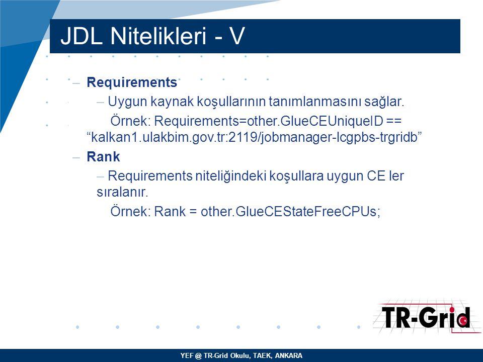 YEF @ TR-Grid Okulu, TAEK, ANKARA JDL Nitelikleri - V –Requirements – Uygun kaynak koşullarının tanımlanmasını sağlar.