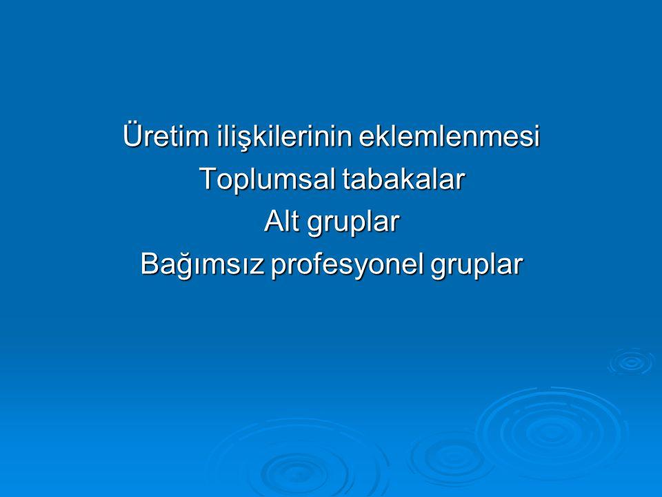 Üretim ilişkilerinin eklemlenmesi Toplumsal tabakalar Alt gruplar Bağımsız profesyonel gruplar