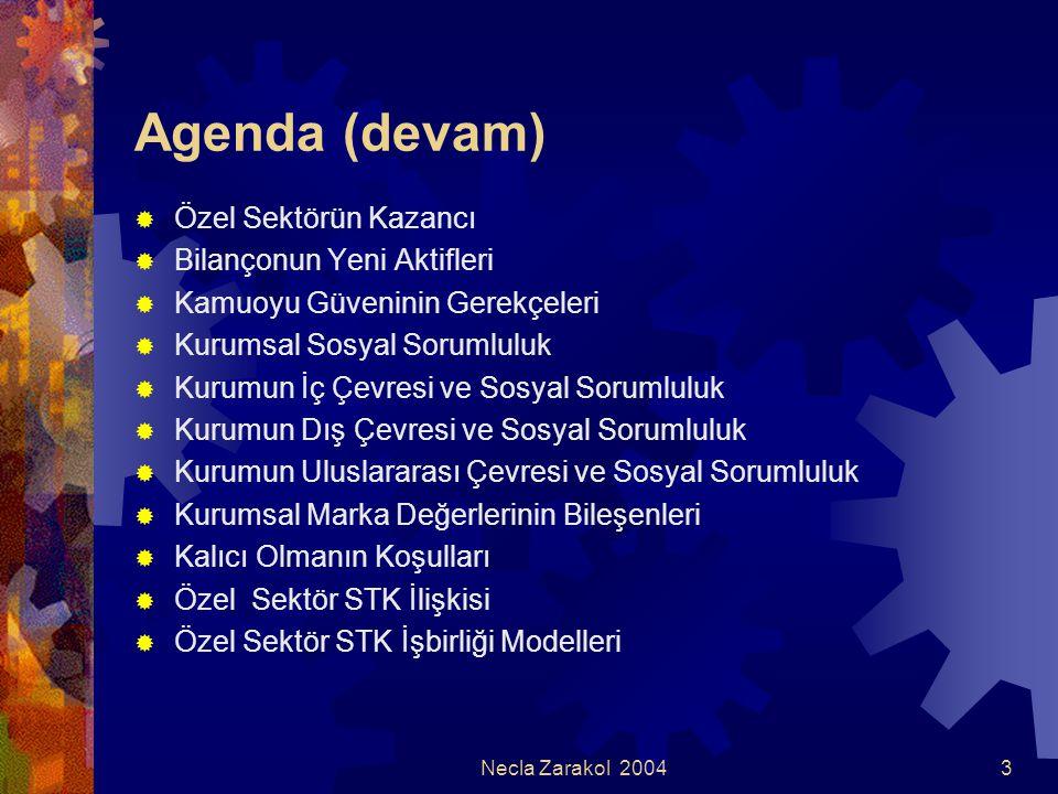 Necla Zarakol 20043 Agenda (devam)  Özel Sektörün Kazancı  Bilançonun Yeni Aktifleri  Kamuoyu Güveninin Gerekçeleri  Kurumsal Sosyal Sorumluluk 