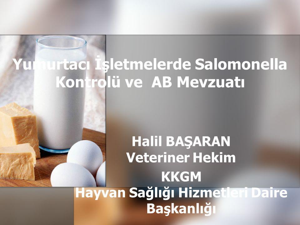 Yumurtacı İşletmelerde Salomonella Kontrolü ve AB Mevzuatı Halil BAŞARAN Veteriner Hekim KKGM Hayvan Sağlığı Hizmetleri Daire Başkanlığı