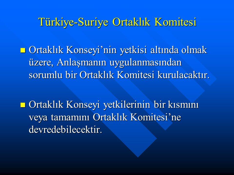 Türkiye-Suriye Ortaklık Komitesi Ortaklık Konseyi'nin yetkisi altında olmak üzere, Anlaşmanın uygulanmasından sorumlu bir Ortaklık Komitesi kurulacakt