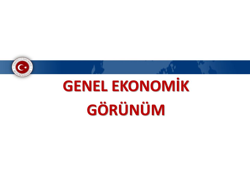 GENEL EKONOMİK GÖRÜNÜM