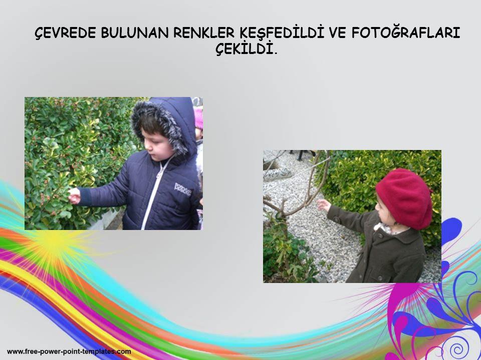 ÇEVREDE BULUNAN RENKLER KEŞFEDİLDİ VE FOTOĞRAFLARI ÇEKİLDİ.