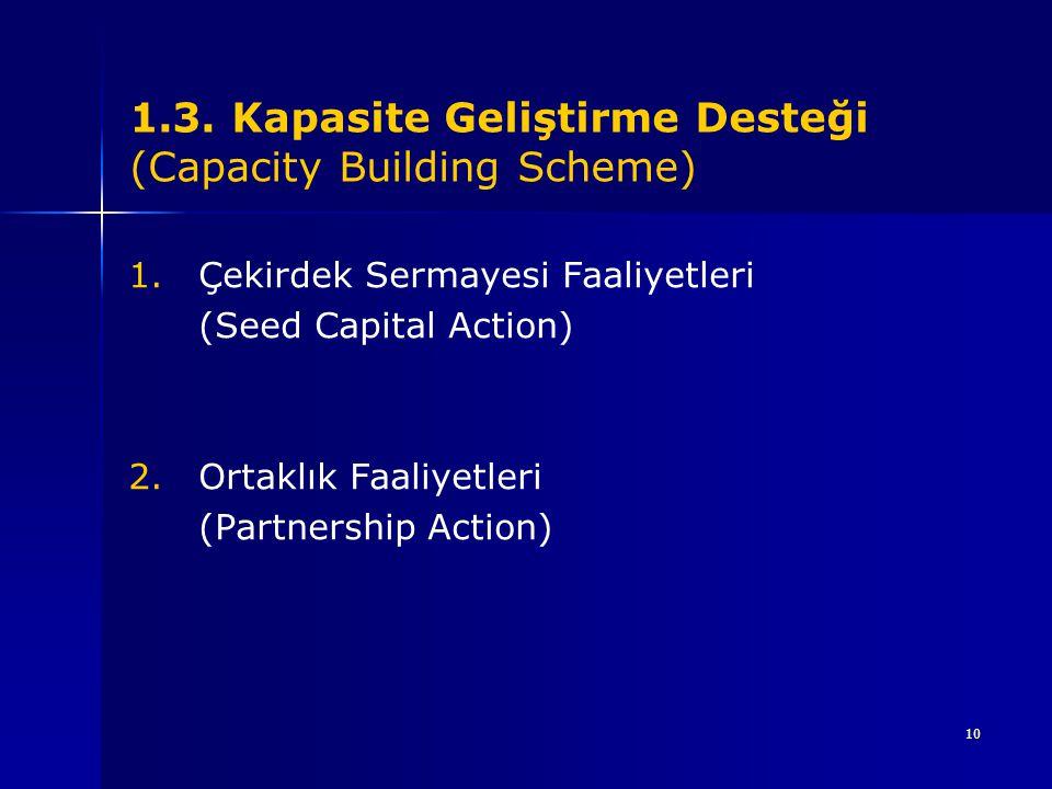 10 1.3. Kapasite Geliştirme Desteği (Capacity Building Scheme) 1.Çekirdek Sermayesi Faaliyetleri (Seed Capital Action) 2.Ortaklık Faaliyetleri (Partne