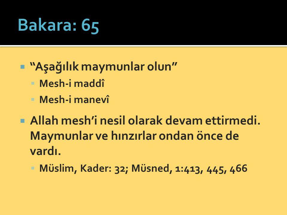  Aşağılık maymunlar olun  Mesh-i maddî  Mesh-i manevî  Allah mesh'i nesil olarak devam ettirmedi.