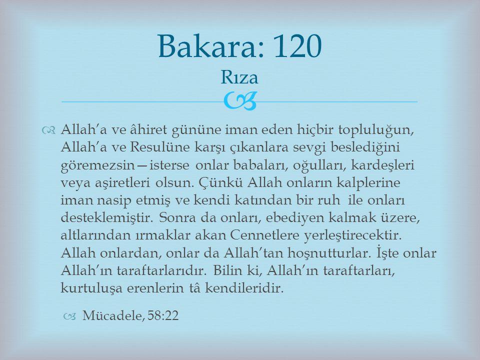   Allah'a ve âhiret gününe iman eden hiçbir topluluğun, Allah'a ve Resulüne karşı çıkanlara sevgi beslediğini göremezsin—isterse onlar babaları, oğu