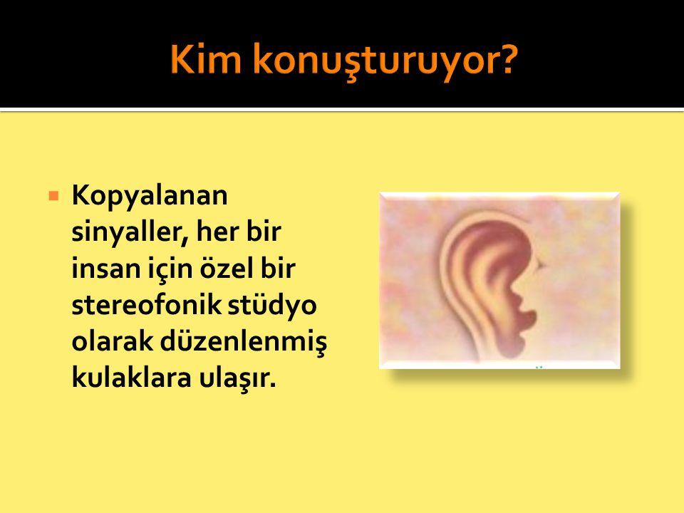  Kopyalanan sinyaller, her bir insan için özel bir stereofonik stüdyo olarak düzenlenmiş kulaklara ulaşır.