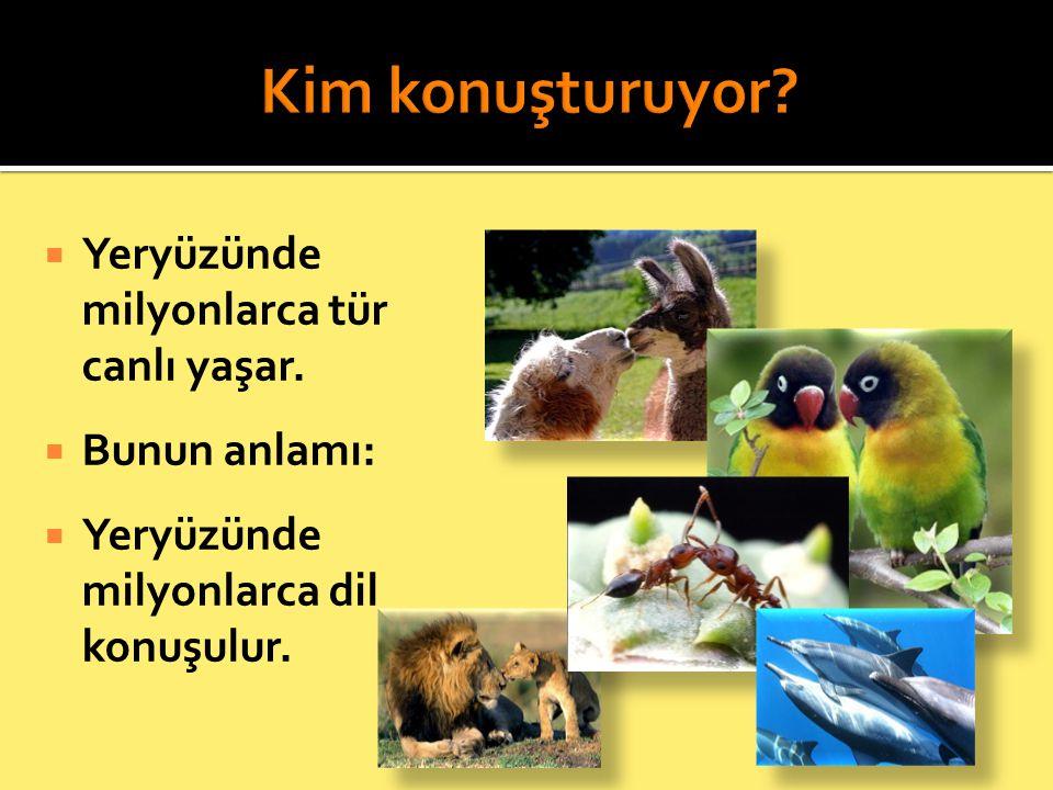  Yeryüzünde milyonlarca tür canlı yaşar.  Bunun anlamı:  Yeryüzünde milyonlarca dil konuşulur.