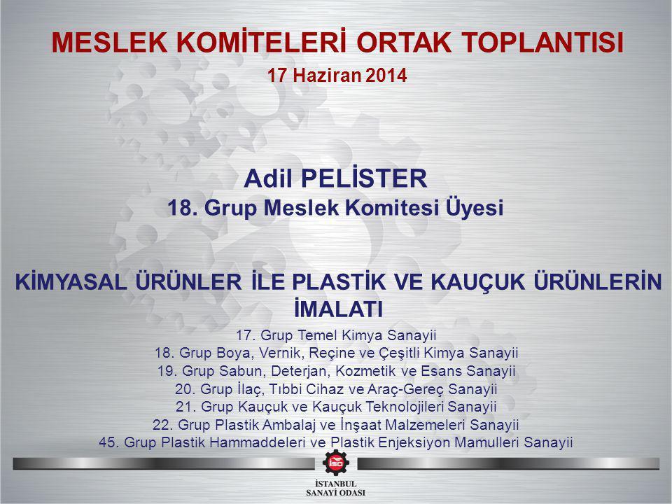 SI MESLEK KOMİTELERİ ORTAK TOPLANTISI Adil PELİSTER 18.