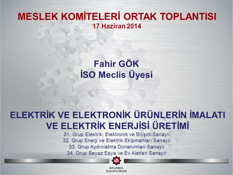 SI MESLEK KOMİTELERİ ORTAK TOPLANTISI 31. Grup Elektrik, Elektronik ve Bilişim Sanayii 32.