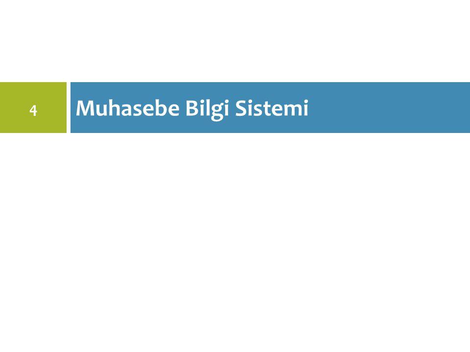 Muhasebe Bilgi Sistemi 4