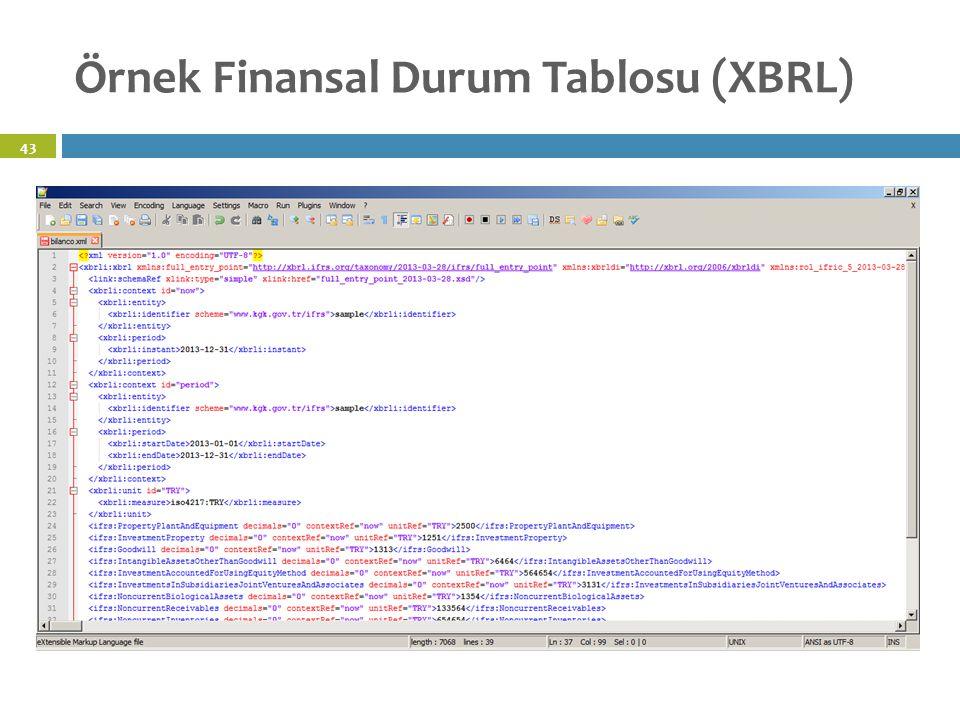 Örnek Finansal Durum Tablosu (XBRL) 43
