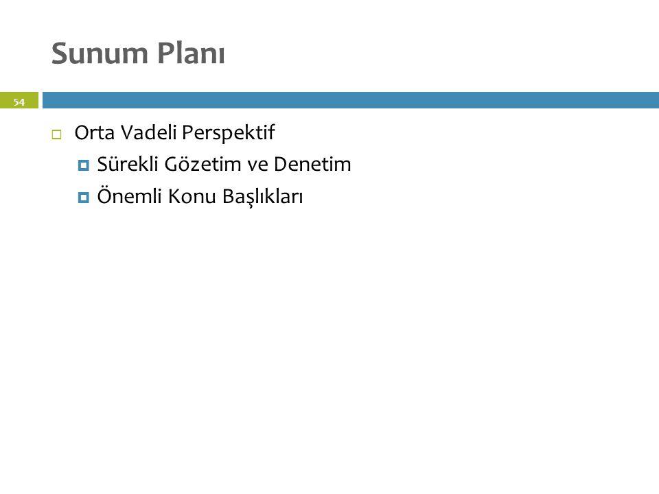 Sunum Planı 54  Orta Vadeli Perspektif  Sürekli Gözetim ve Denetim  Önemli Konu Başlıkları
