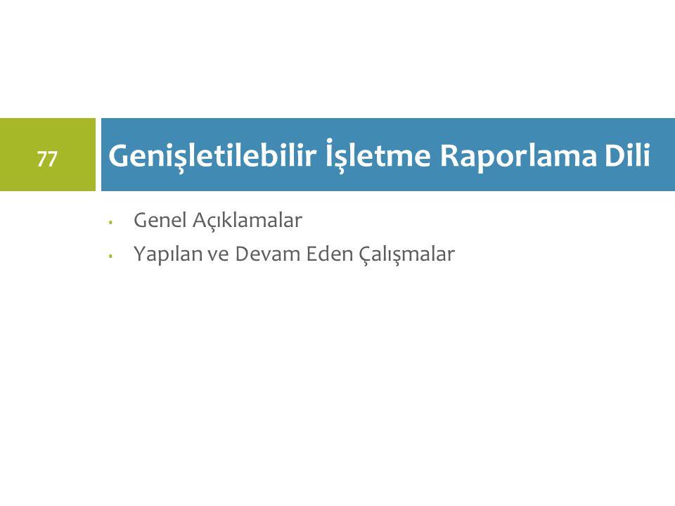 Genel Açıklamalar Yapılan ve Devam Eden Çalışmalar Genişletilebilir İşletme Raporlama Dili 77