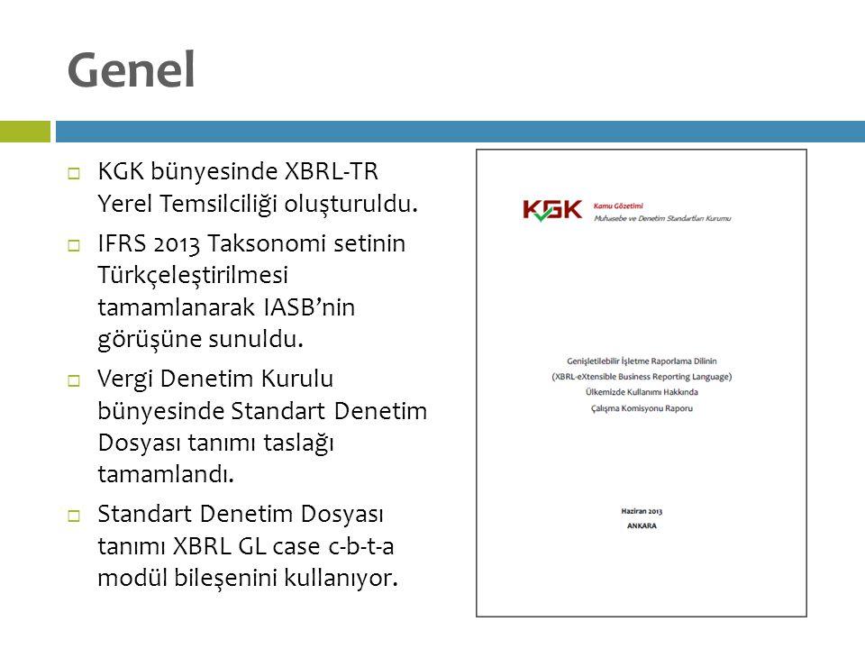 Genel  KGK bünyesinde XBRL-TR Yerel Temsilciliği oluşturuldu.