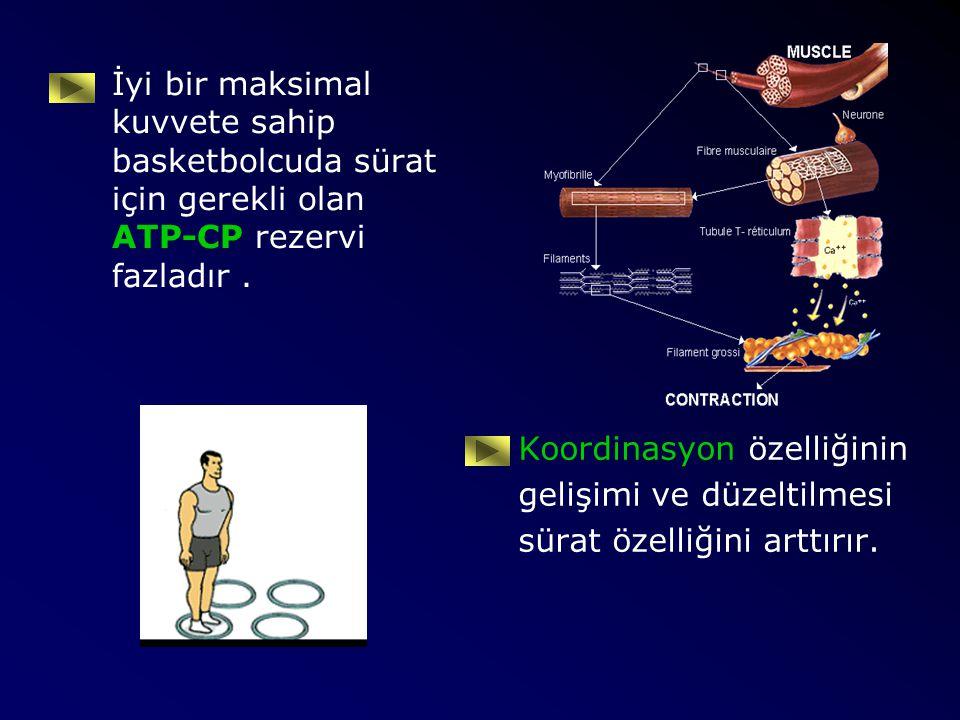 İyi bir maksimal kuvvete sahip basketbolcuda sürat için gerekli olan ATP-CP rezervi fazladır. Koordinasyon özelliğinin gelişimi ve düzeltilmesi sürat
