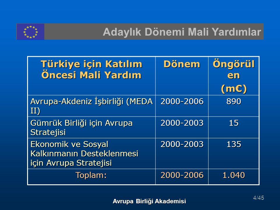 2003 Yılı Projeleri Avrupa Birliği Akademisi NoProje AdıUygulayıcı Kuruluş Toplam Bütçe 22Bulgaristan ' la Sınır ö tesi İşbirliği – Ortak K üçü k Projeler Fonu DPT500.000 € 23T ü rk Kamu İ ç Mali Kontrol Sisteminin AB Uygulamaları ve Uluslararası Standartlar ile Uyumlu Hale Getirilmesi Maliye Bakanl ığı3.000.000 € 24Sayıştay Başkanlığı ' nın Denetim Kapasitesinin G üç lendirilmesi Say ış tay Ba ş kanl ığı1.400.000 € 25T ü rkiye Yatırım Promosyon Ajansı ' nda Doğrudan Yabancı Yatırımı Teşvik Fonksiyonunun Geliştirilmesi Hazine M ü steşarlığı3.901.200 € 26Hazine M ü steşarlığı Sigortacılık Genel M ü d ü rl ü ğ ü n ü n ve Sigorta Denetleme Kurulu ' nun Kapasitesinin Geliştirilmesi Hazine M ü steşarlığı3.100.000 € 25/45