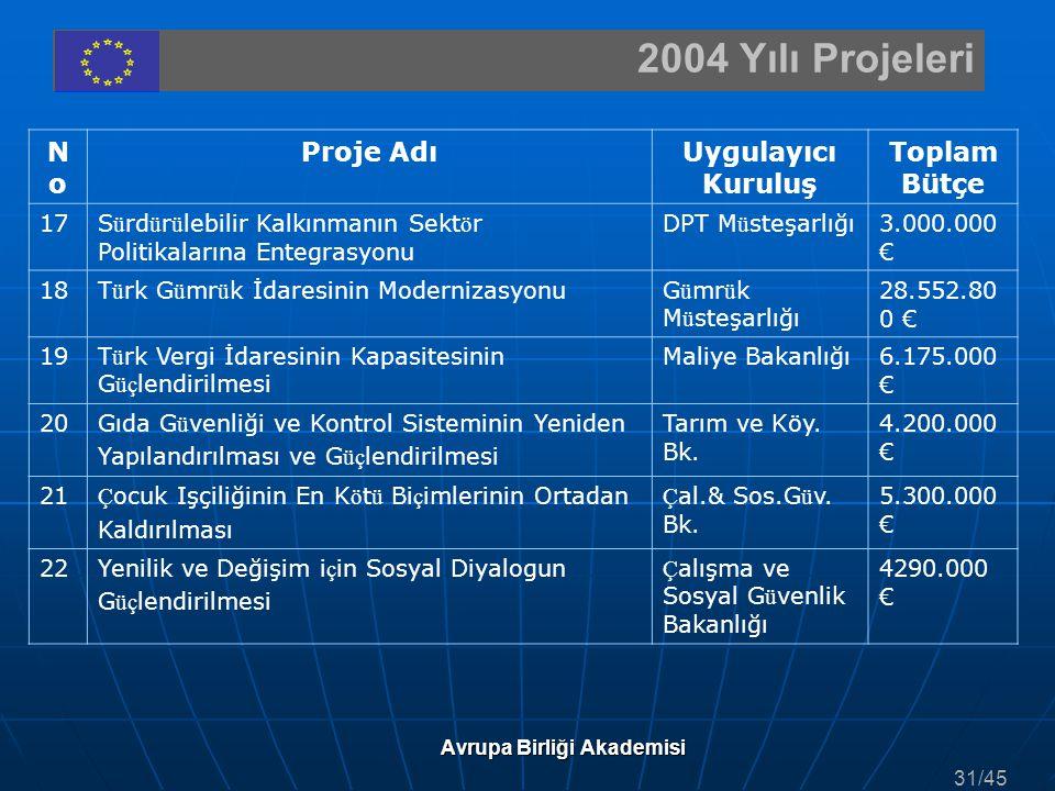 2004 Yılı Projeleri Avrupa Birliği Akademisi NoNo Proje AdıUygulayıcı Kuruluş Toplam Bütçe 17S ü rd ü r ü lebilir Kalkınmanın Sekt ö r Politikalarına