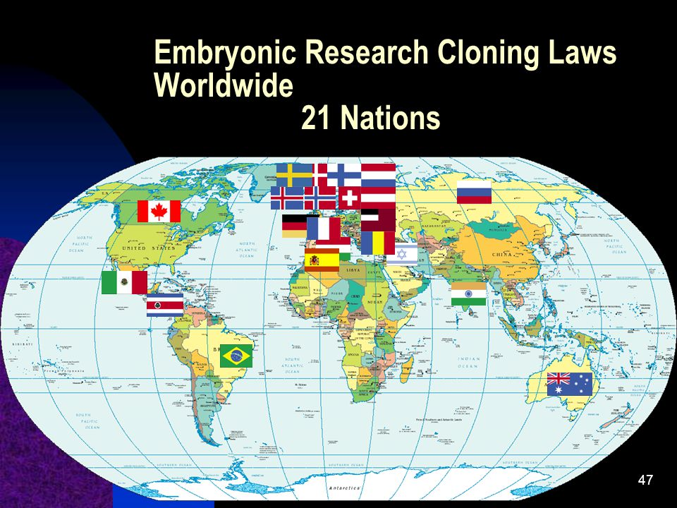 47 Embryonic Research Cloning Laws Worldwide 21 Nations