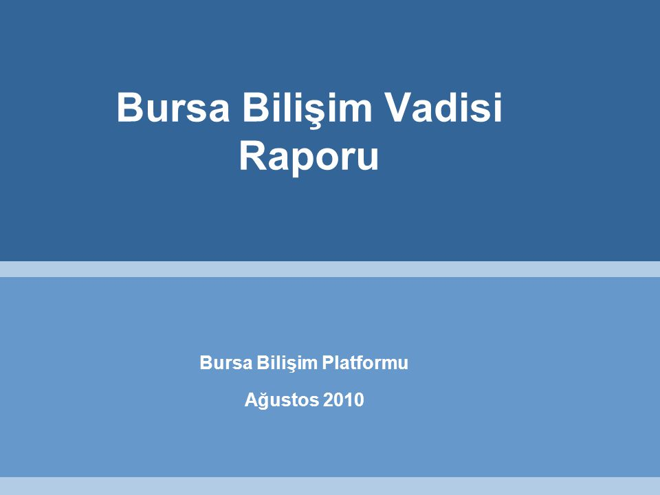 Bursa Bilişim Vadisi Raporu Bursa Bilişim Platformu Ağustos 2010