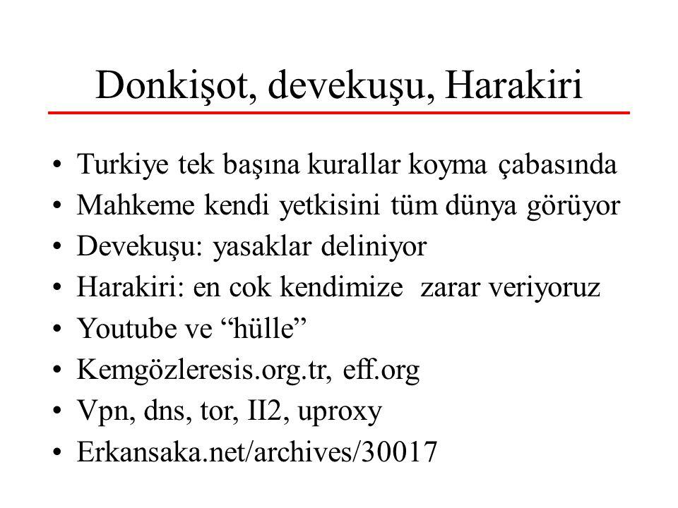 Donkişot, devekuşu, Harakiri Turkiye tek başına kurallar koyma çabasında Mahkeme kendi yetkisini tüm dünya görüyor Devekuşu: yasaklar deliniyor Haraki