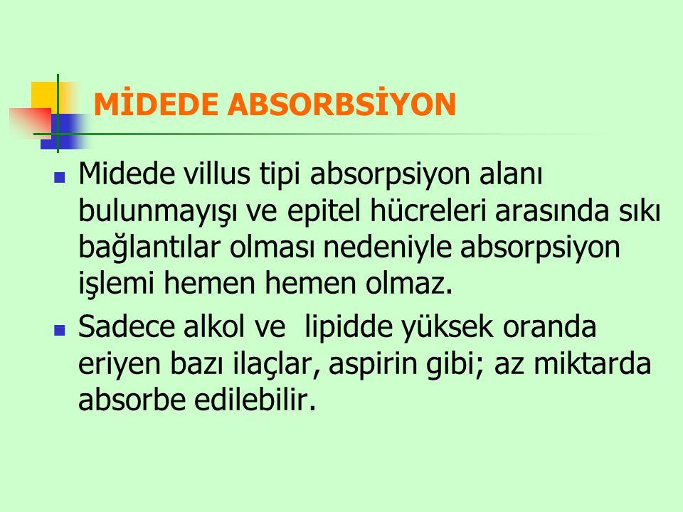 MİDEDE ABSORBSİYON Midede villus tipi absorpsiyon alanı bulunmayışı ve epitel hücreleri arasında sıkı bağlantılar olması nedeniyle absorpsiyon işlemi