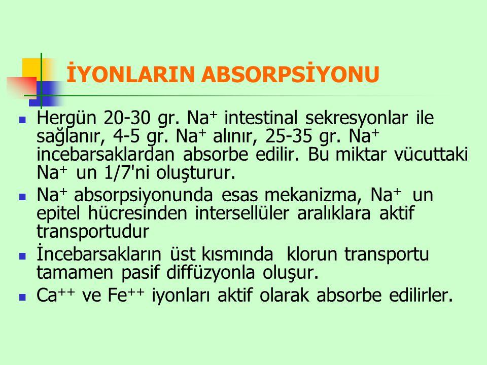 İYONLARIN ABSORPSİYONU Hergün 20-30 gr. Na + intestinal sekresyonlar ile sağlanır, 4-5 gr. Na + alınır, 25-35 gr. Na + incebarsaklardan absorbe edilir