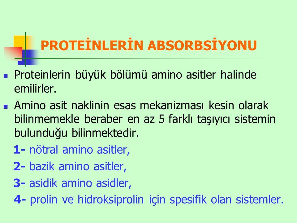 PROTEİNLERİN ABSORBSİYONU Proteinlerin büyük bölümü amino asitler halinde emilirler. Amino asit naklinin esas mekanizması kesin olarak bilinmemekle be