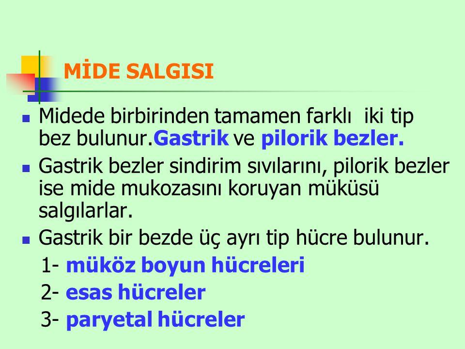 MİDE SALGISI Midede birbirinden tamamen farklı iki tip bez bulunur.Gastrik ve pilorik bezler. Gastrik bezler sindirim sıvılarını, pilorik bezler ise m