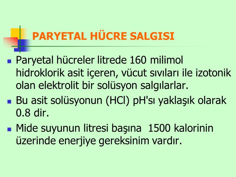 PARYETAL HÜCRE SALGISI Paryetal hücreler litrede 160 milimol hidroklorik asit içeren, vücut sıvıları ile izotonik olan elektrolit bir solüsyon salgıla