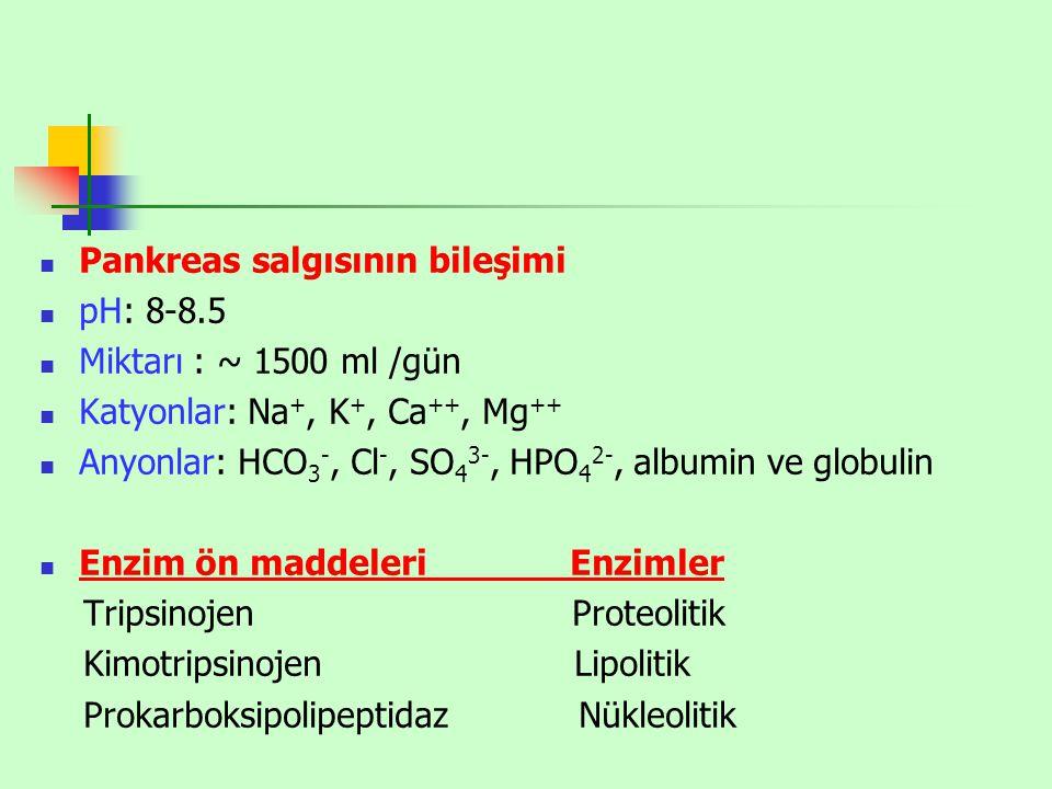 Pankreas salgısının bileşimi pH: 8-8.5 Miktarı : ~ 1500 ml /gün Katyonlar: Na +, K +, Ca ++, Mg ++ Anyonlar: HCO 3 -, Cl -, SO 4 3-, HPO 4 2-, albumin