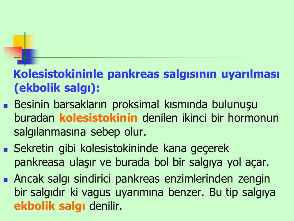 Kolesistokininle pankreas salgısının uyarılması (ekbolik salgı): Besinin barsakların proksimal kısmında bulunuşu buradan kolesistokinin denilen ikinci