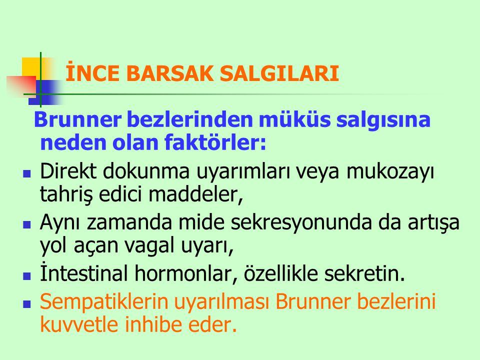 İNCE BARSAK SALGILARI Brunner bezlerinden müküs salgısına neden olan faktörler: Direkt dokunma uyarımları veya mukozayı tahriş edici maddeler, Aynı za
