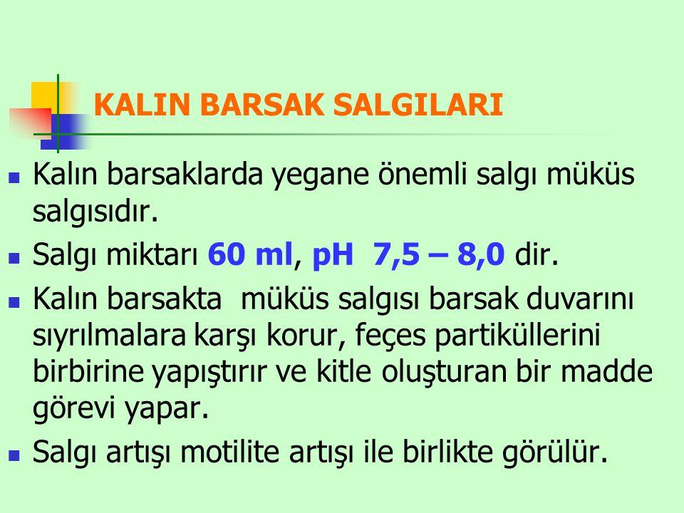 KALIN BARSAK SALGILARI Kalın barsaklarda yegane önemli salgı müküs salgısıdır. Salgı miktarı 60 ml, pH 7,5 – 8,0 dir. Kalın barsakta müküs salgısı bar