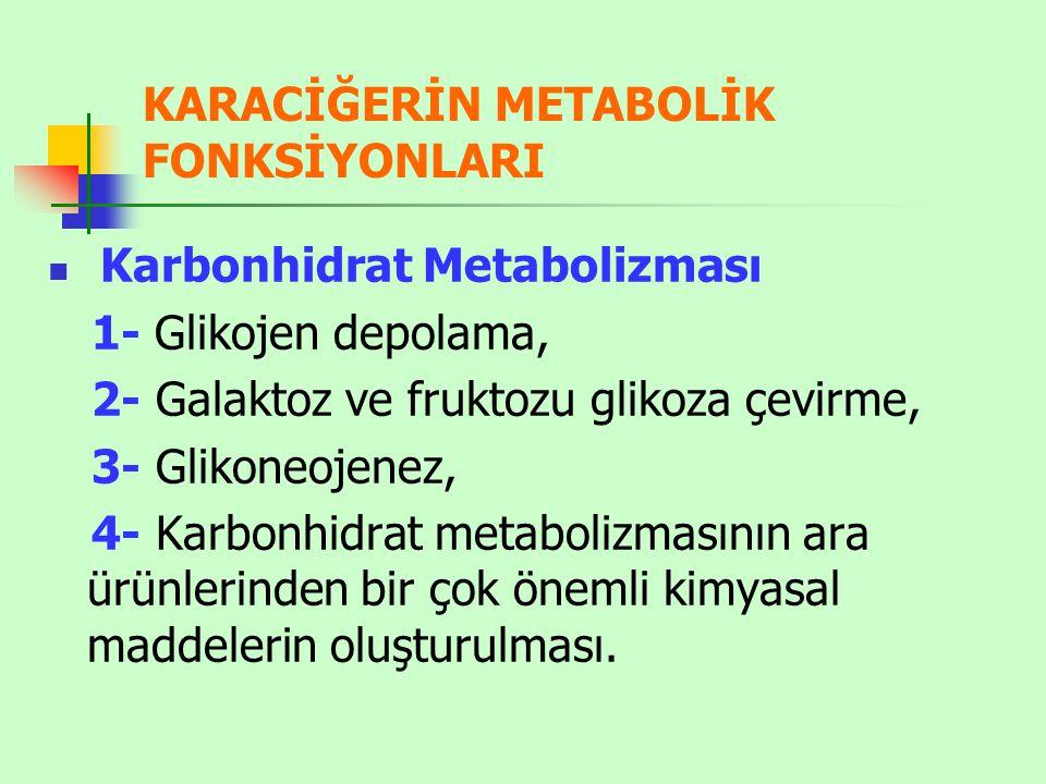KARACİĞERİN METABOLİK FONKSİYONLARI Karbonhidrat Metabolizması 1- Glikojen depolama, 2- Galaktoz ve fruktozu glikoza çevirme, 3- Glikoneojenez, 4- Kar