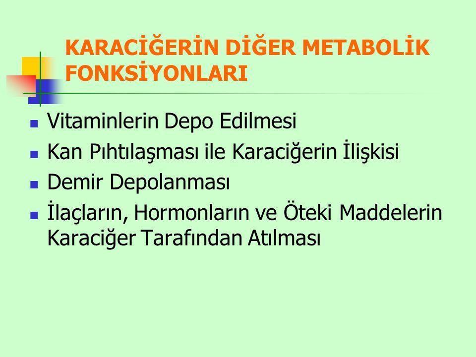 KARACİĞERİN DİĞER METABOLİK FONKSİYONLARI Vitaminlerin Depo Edilmesi Kan Pıhtılaşması ile Karaciğerin İlişkisi Demir Depolanması İlaçların, Hormonları